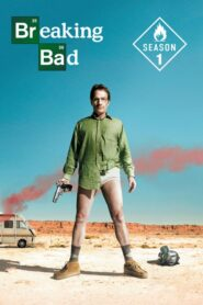 Breaking Bad: Sezona 1 online sa prevodom