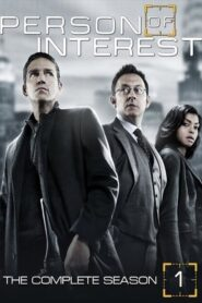 Person of Interest: Sezona 1 online sa prevodom