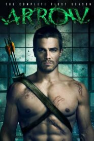 Arrow: Sezona 1 online sa prevodom