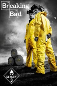 Breaking Bad: Sezona 3 online sa prevodom