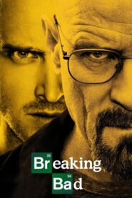 Breaking Bad online sa prevodom