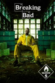 Breaking Bad: Sezona 5 online sa prevodom