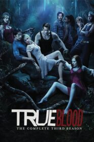 True Blood: Sezona 3 online sa prevodom